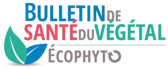 Logo bulletin du végétal (BSV)