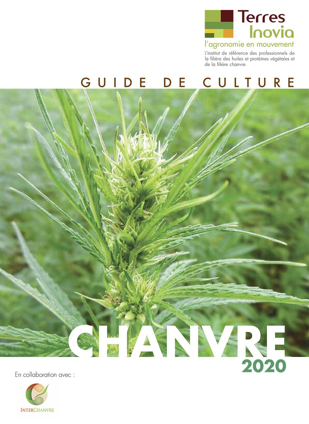 guide chanvre