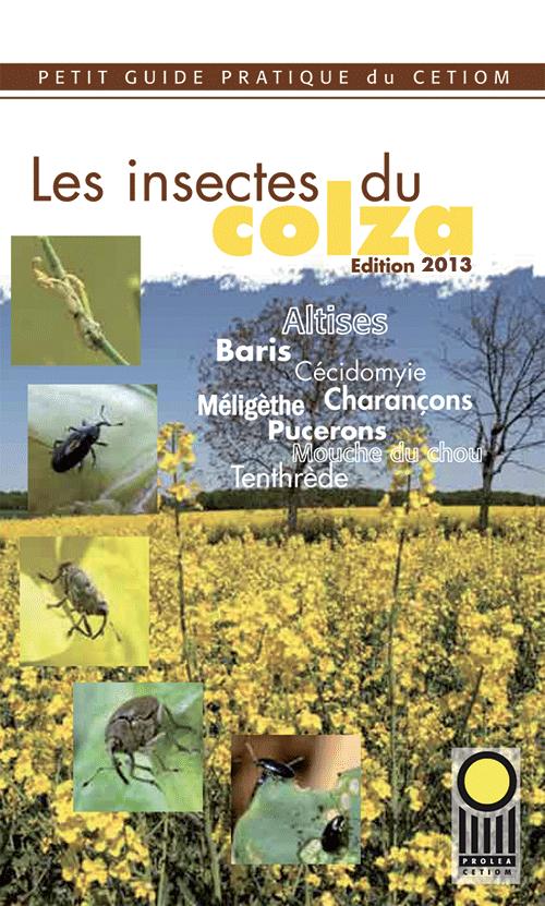 guide pratique les insectes du colza