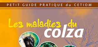 guide_maladies_colza_p.png